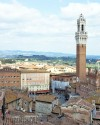 Day trip to Siena