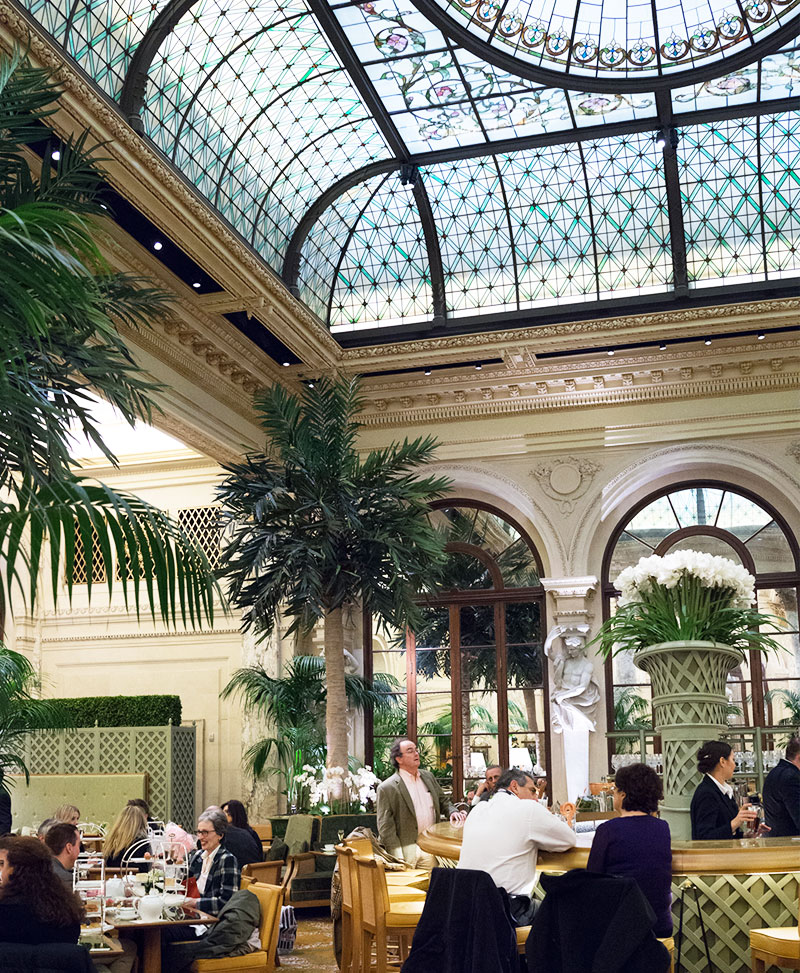 Palm Court The Plaza