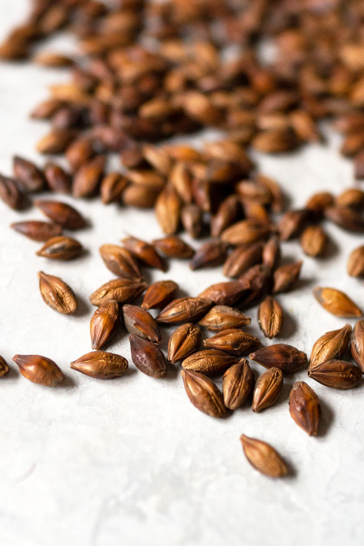 Whole barley kernels scattered on surface.